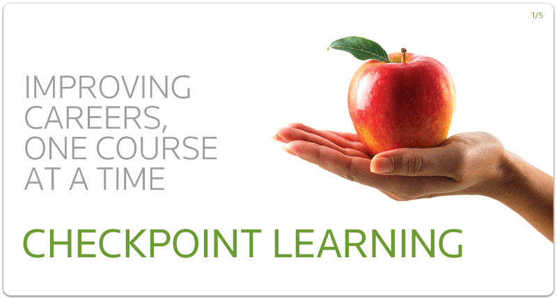 introduction to checkpoint learning